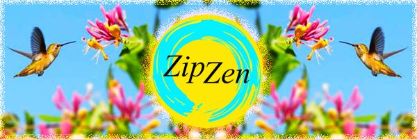 190322_ZipZan_LenteBanner