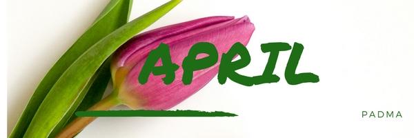 Banner_april_600